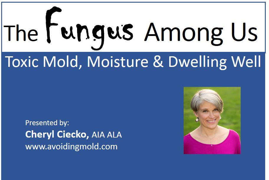 The Fungus Among Us - Toxic Mold, Moisture, & Dwelling Well