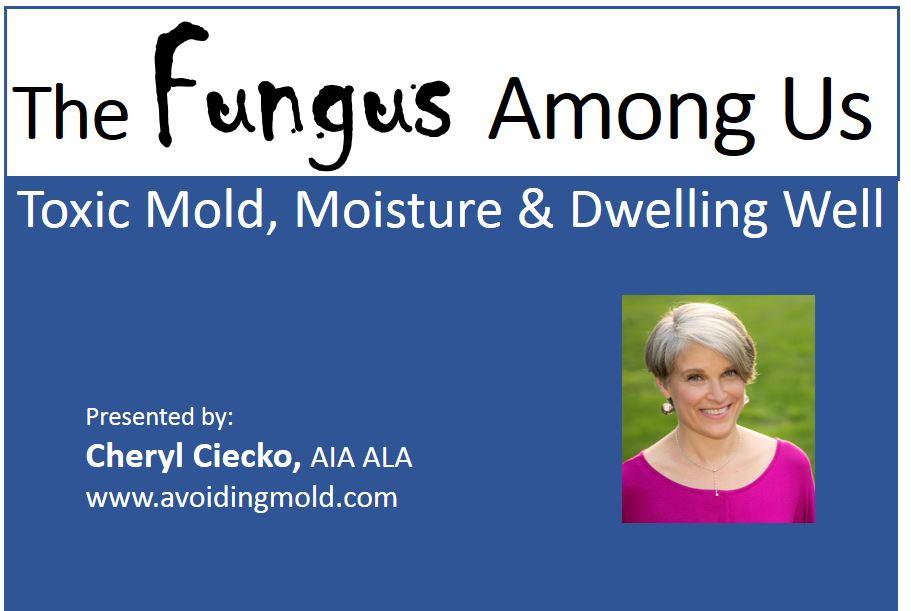 The Fungus Among Us - Toxic Mold, Moisture, & Dwelling Well