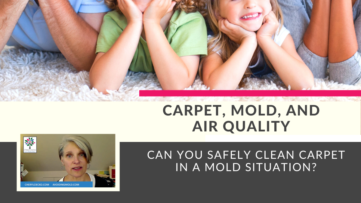 Carpet Cleaning and Mold Safety Tutorial Video