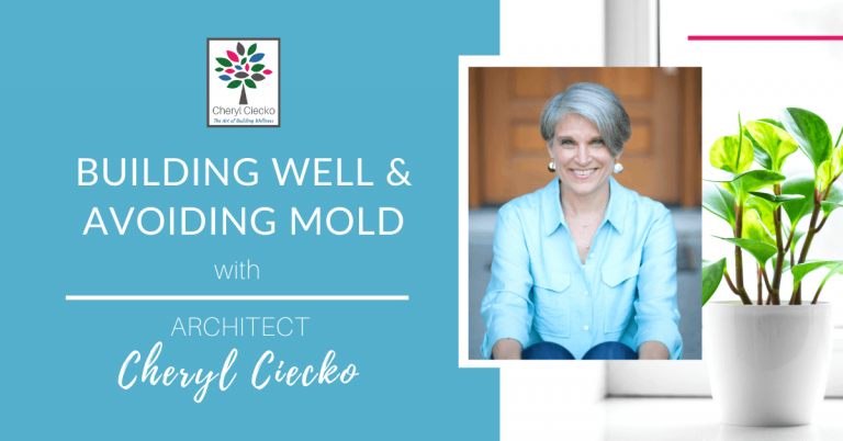 Building Well and Avoiding Mold with Architect Cheryl Ciecko